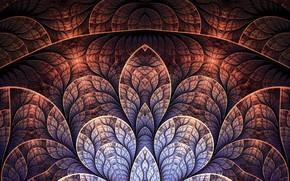Picture sheet, pattern, texture, symmetry