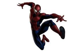 Picture Marvel, spider-man, hero, spider man