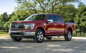 Picture red, Ford, pickup, F-150, 2020, 2021, F-series