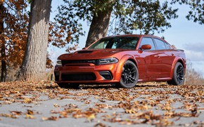 Picture Dodge, Charger, Hellcat, SRT, 2021, Redeye