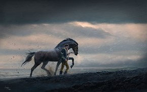 Picture clouds, rain, shore, horse, Come hell or high water
