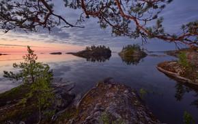 Picture water, trees, lake, stones, rocks, pine, Russia, Lake Ladoga, Islands, Ladoga