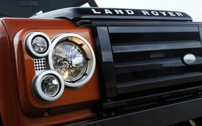 Picture Land Rover, grille, 2009, Defender, Limited Edition