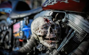 Picture background, skull, motorcycle