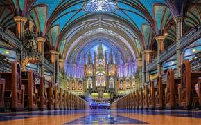 Picture interior, Cathedral, canada, montreal, basilica