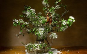 Picture branches, cherry, holiday, victory day, pitcher, May 9, flowers, ribbon, napkin, Татьяна Феденкова