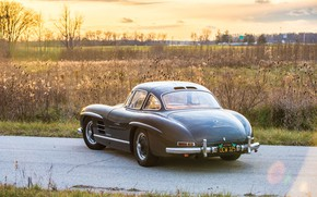 Picture Coupe, Mercedes - Benz, Sport, 300SL, Vehicle
