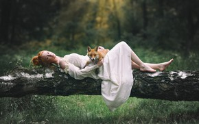 Picture forest, look, girl, glade, dress, Fox, log, Fox