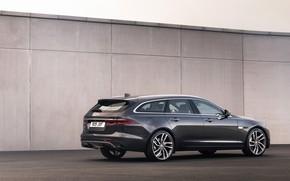 Picture wall, Jaguar, universal, the five-door, Jaguar XF, 2020, XF, XF Sportbrake