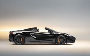 Picture McLaren, supercar, side view, 2018, Spider, Design Edition, 570S