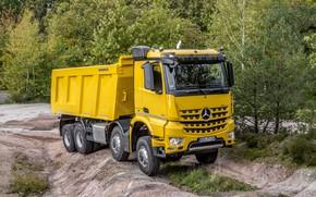 Picture trees, yellow, Mercedes-Benz, dump truck, Arocs, four-axle