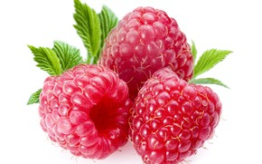 Picture berries, raspberry, raspberry