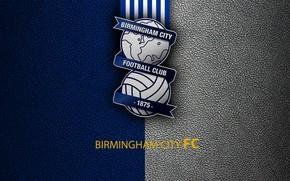 Picture wallpaper, sport, logo, football, English Premier League, Birmingham City