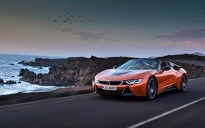 Picture rocks, coast, BMW, Roadster, 2018, i8, dark orange, i8 Roadster