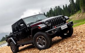 Picture black, SUV, pickup, Gladiator, 4x4, chips, Jeep, Rubicon, 2019