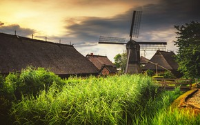 Picture grass, thickets, shore, home, roof, windmill