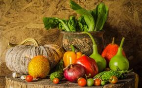 Picture harvest, pumpkin, fruit, still life, vegetables, autumn, still life, pumpkin, vegetables, harvest
