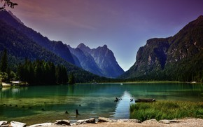 Picture landscape, nature, lake, Italy, forest, The Dolomites, The lake of Dobbiaco, Dobbiaco, Toblacher See