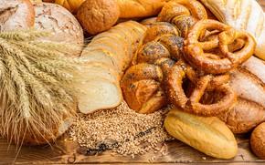 Picture wheat, bread, ears, cakes, buns, baton