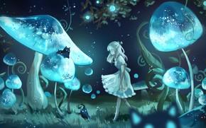 Picture girl, cats, night, mushrooms, fantasy