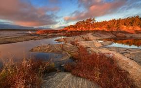 Picture autumn, forest, grass, landscape, nature, lake, stones, Lake Ladoga, Karelia, Ladoga, Maxim Evdokimov, Skerries