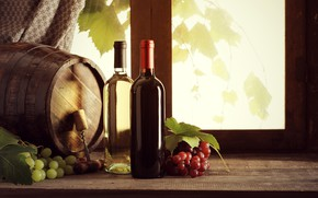 Picture leaves, wine, window, grapes, tube, bottle, sill, corkscrew, blind, barrel