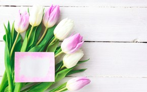 Picture flowers, bouquet, tulips, love, pink, white, fresh, pink, flowers, romantic, tulips, spring