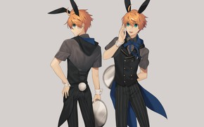 Picture rabbit, guy, Bunny, tray, Fanart, the waiter, Fate/Grand Order, Pixiv, Fanart From Pixiv, Saber (Fate/Prototype)