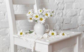 Picture wall, chamomile, chair, pitcher, napkin