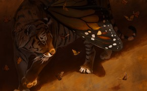 Picture butterfly, tiger, wings, by Pixxus