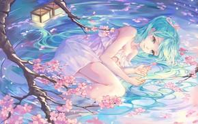 Picture girl, Vocaloid, green eyes, dress, legs, anime, water, artwork, blue hair, anime girl, minidress, peach …