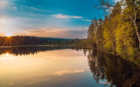 Picture autumn, trees, reflection, shore, birch, pond