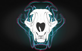 Picture Skull, Background, Art