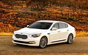 Picture white, kia, kia motors, kia cars, kia k9, k900