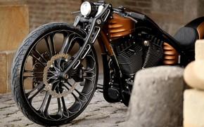 Picture Harley-Davidson, Custom, Motorcycle, Thunderbike