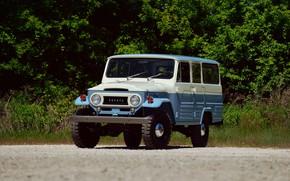 Picture Toyota, Blue, 4x4, Land Cruiser, Off Road, FJ45LV