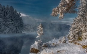 Picture winter, snow, trees, river, frost, Russia, Siberia, Enisey, Alexander Makeev