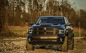 Picture stones, Dodge, pickup, Ram, mound, 2017, 1500 RX Crew Cab, Militem