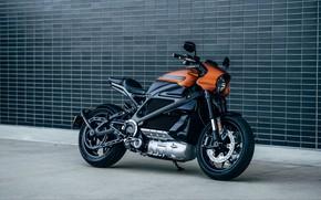 Picture Bike, Harley-Davidson, Motorcycle
