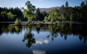 Picture forest, trees, lake, reflection, Scotland