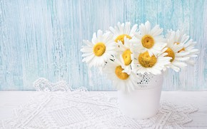 Picture flowers, chamomile, bouquet, pots