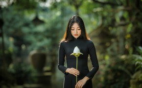 Picture girl, Lotus, Asian