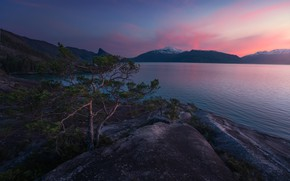 Picture sunset, mountains, Norway, pine, Norway, the fjord, Hardanger, Hardanger, Hardangerfjord, Хардангер-фьорд