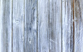 Picture color, structure, wood