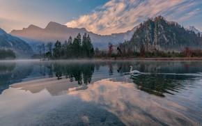 Picture landscape, mountains, nature, lake, reflection, Austria, Swan, Almsee, Friedrich Beren, Hubert Bichler, Else