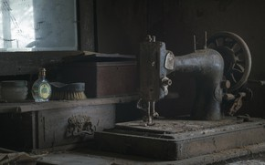 Picture dust, sewing machine, naturalism