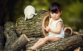 Picture animal, rabbit, baby, child, logs, Marianne Smolin