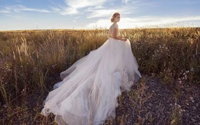 Picture field, grass, style, model, dress, the bride