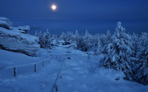 Picture winter, snow, trees, landscape, mountains, night, nature, stones, the moon, ate, Czech Republic, track