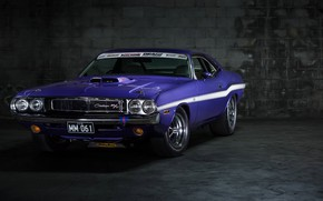 Picture Dodge, Challenger, Purple, Dodge Challenger, Muscle car, Vehicle